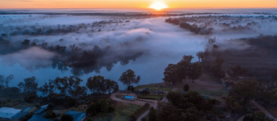 Photo for: Caudo Vineyard: Offering Food, Wine, Water & Environment In The Riverland Region Of South Australia