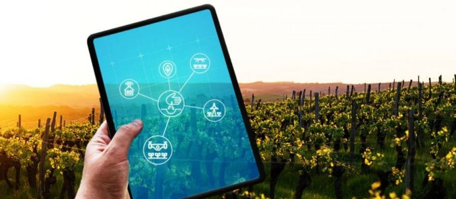 Photo for: Why the Internet of Things Will Lead to the Internet of Wines