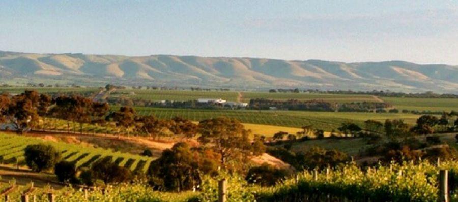 Photo for: Meet Winegrapes Australia at IBWS Show