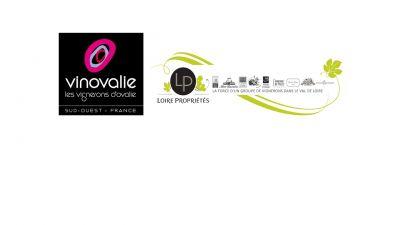 Logo for:  Vinovalie  Loire Propriétés