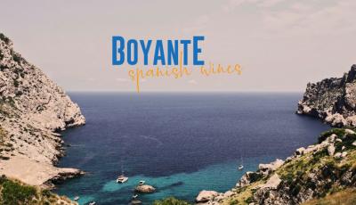 Logo for:  Bodegas Boyante